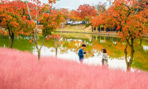img-bg-iyk-before-you-go-popular-desitnations-gyeongsangbuk-do