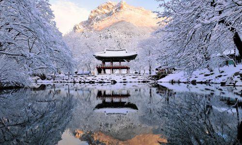 img-bg-iyk-season-festivals-winter
